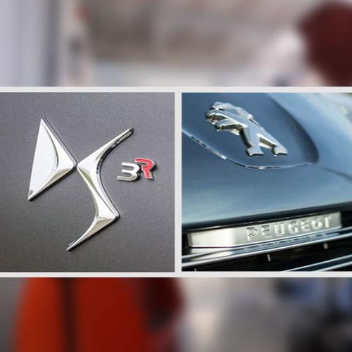 We Passed. Peugeot, Citroen & DS Audits.